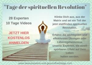 Tage der spirituellen Revolution + Anmelden
